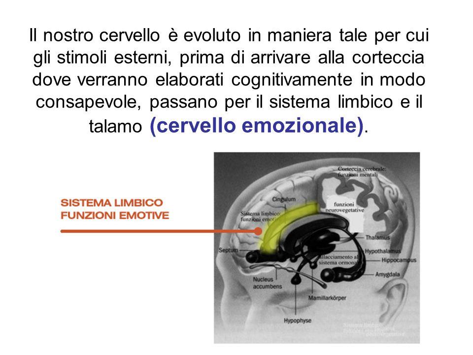 Il nostro cervello è evoluto in maniera tale per cui gli stimoli esterni, prima di arrivare alla corteccia dove verranno elaborati cognitivamente in modo consapevole, passano per il sistema limbico e il talamo (cervello emozionale).