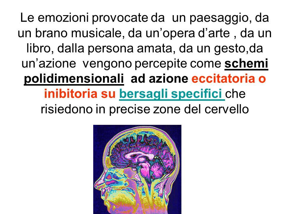 Le emozioni provocate da un paesaggio, da un brano musicale, da un'opera d'arte , da un libro, dalla persona amata, da un gesto,da un'azione vengono percepite come schemi polidimensionali ad azione eccitatoria o inibitoria su bersagli specifici che risiedono in precise zone del cervello
