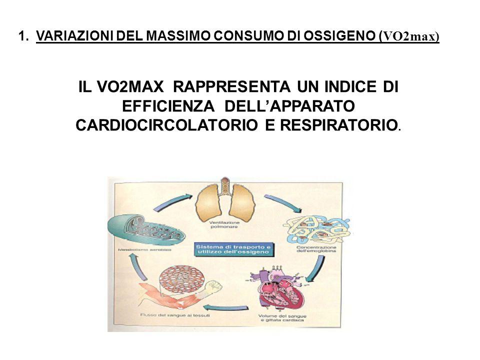 VARIAZIONI DEL MASSIMO CONSUMO DI OSSIGENO (VO2max)