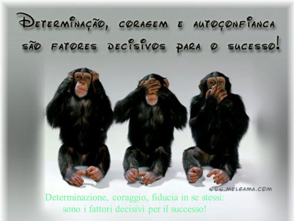 Determinazione, coraggio, fiducia in se stessi: sono i fattori decisivi per il successo!