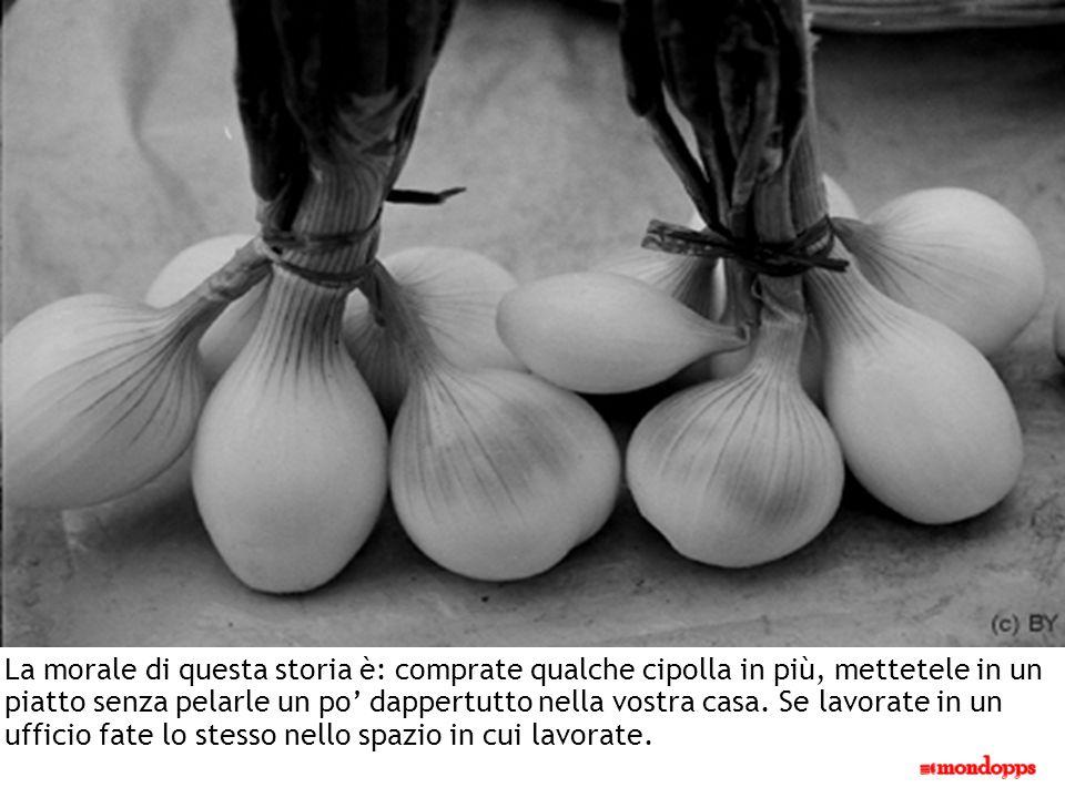 La morale di questa storia è: comprate qualche cipolla in più, mettetele in un piatto senza pelarle un po' dappertutto nella vostra casa.