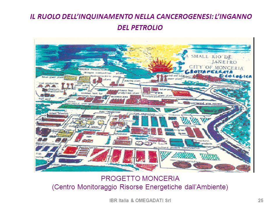 IL RUOLO DELL'INQUINAMENTO NELLA CANCEROGENESI: L'INGANNO DEL PETROLIO