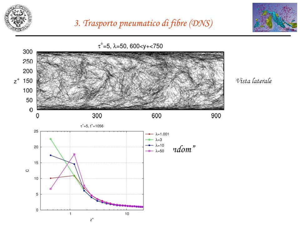 3. Trasporto pneumatico di fibre (DNS)
