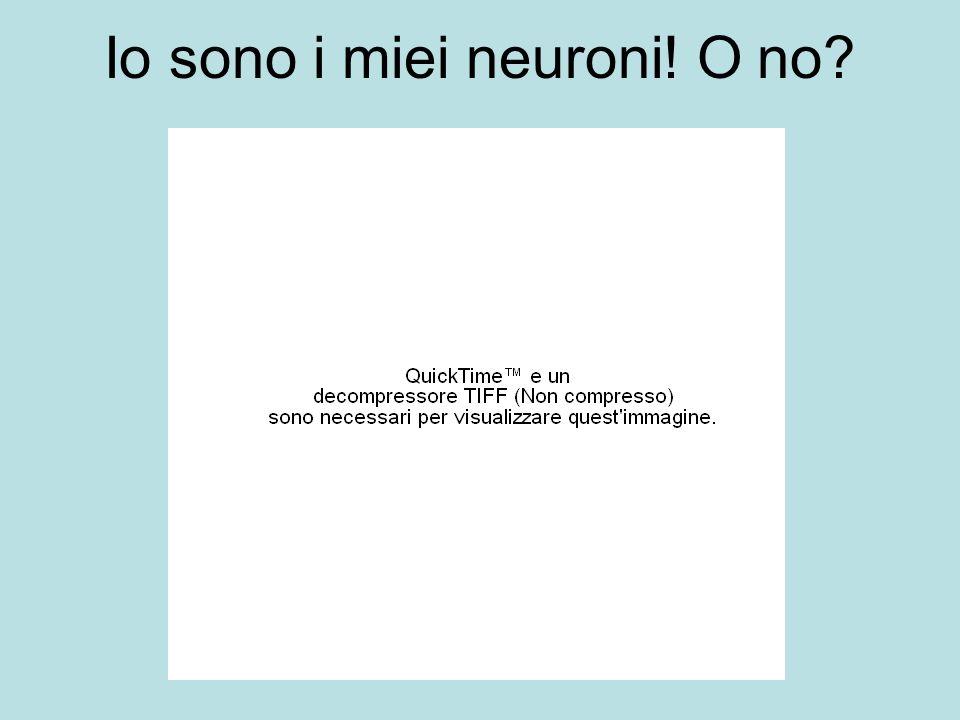 Io sono i miei neuroni! O no