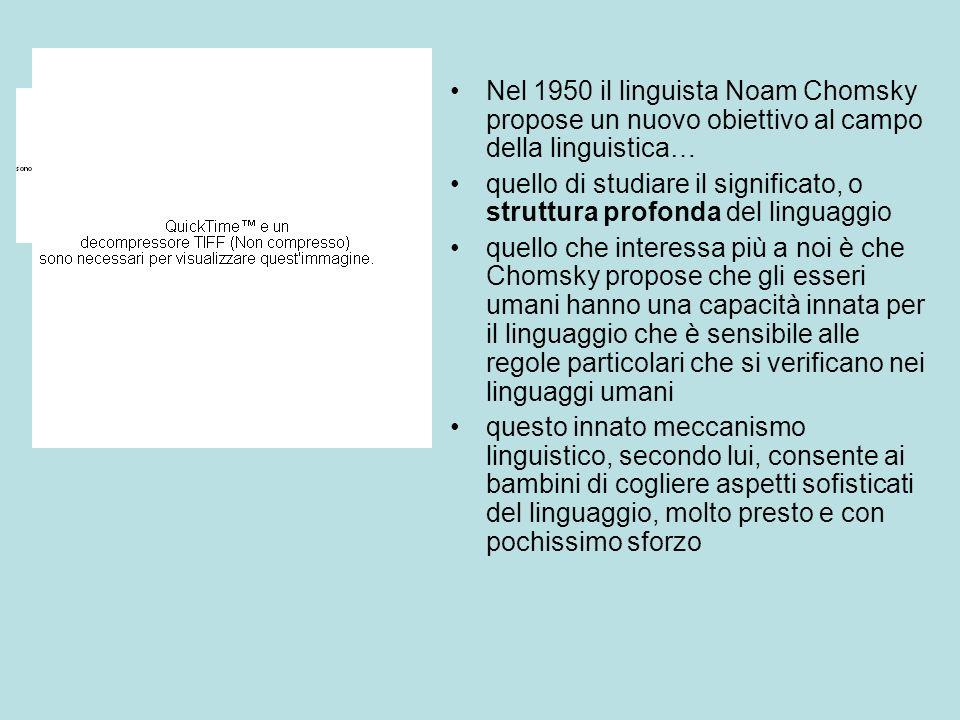 Nel 1950 il linguista Noam Chomsky propose un nuovo obiettivo al campo della linguistica…