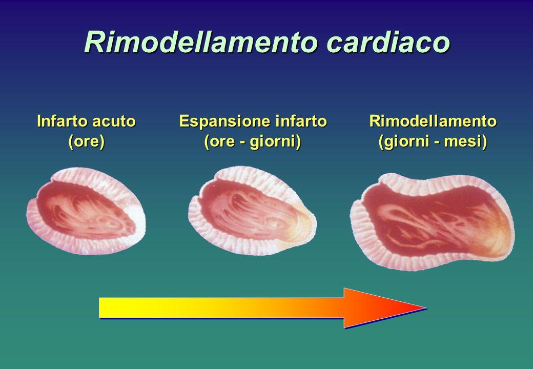 Rimodellamento cardiaco