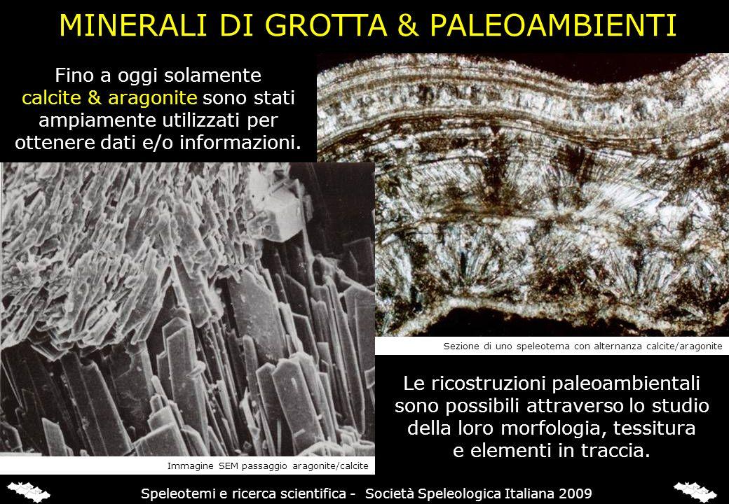 MINERALI DI GROTTA & PALEOAMBIENTI