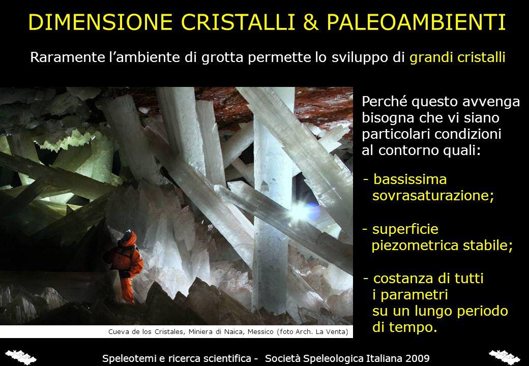 DIMENSIONE CRISTALLI & PALEOAMBIENTI