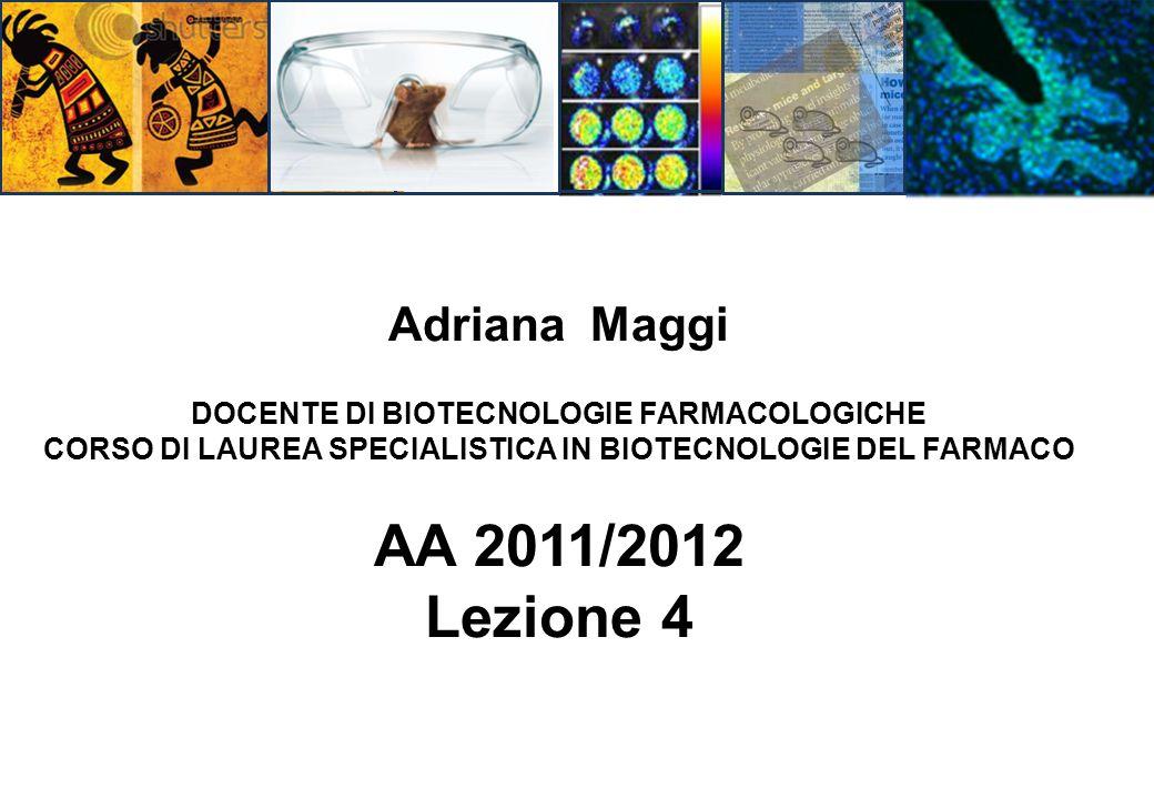 AA 2011/2012 Lezione 4 Adriana Maggi