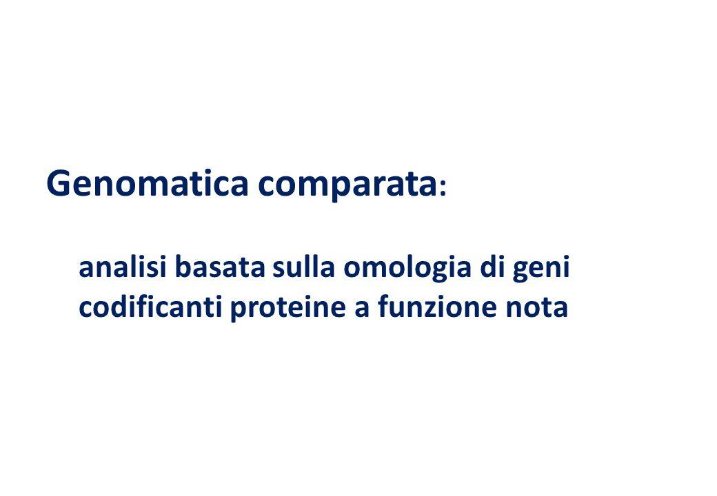 Genomatica comparata:
