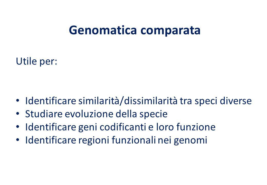 Genomatica comparata Utile per: