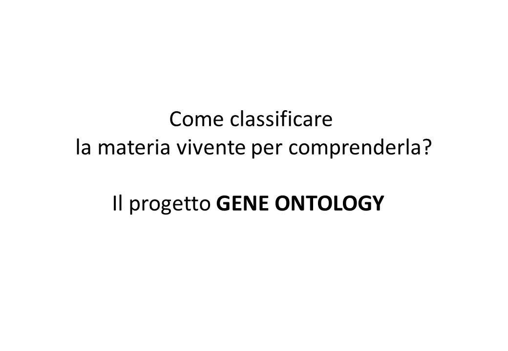 la materia vivente per comprenderla Il progetto GENE ONTOLOGY