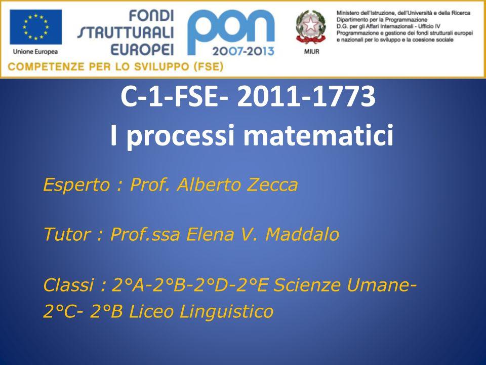 C-1-FSE- 2011-1773 I processi matematici