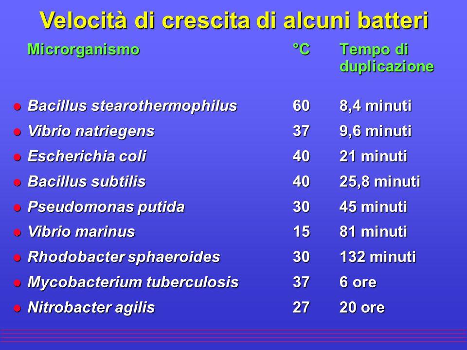 Velocità di crescita di alcuni batteri