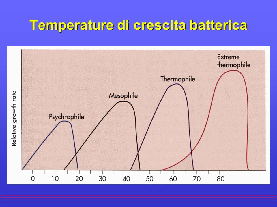 Temperature di crescita batterica