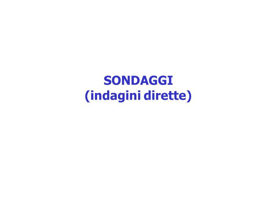 SONDAGGI (indagini dirette)