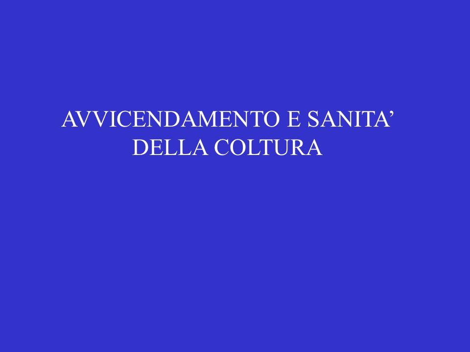 AVVICENDAMENTO E SANITA' DELLA COLTURA