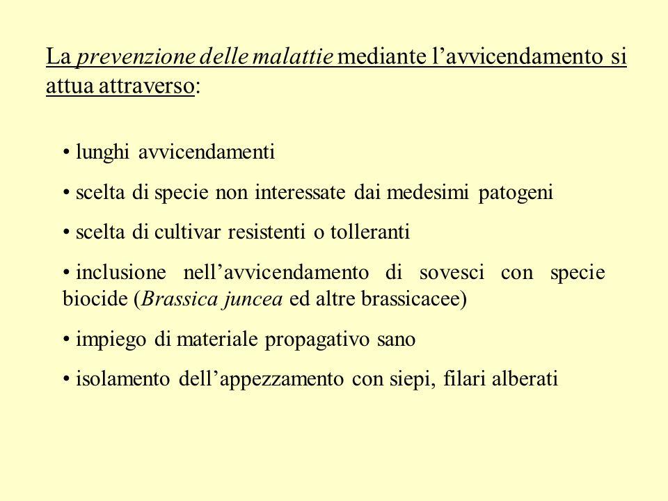 La prevenzione delle malattie mediante l'avvicendamento si attua attraverso: