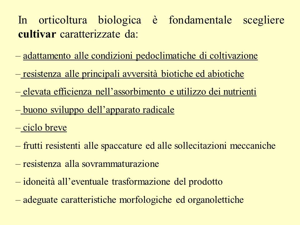 In orticoltura biologica è fondamentale scegliere cultivar caratterizzate da: