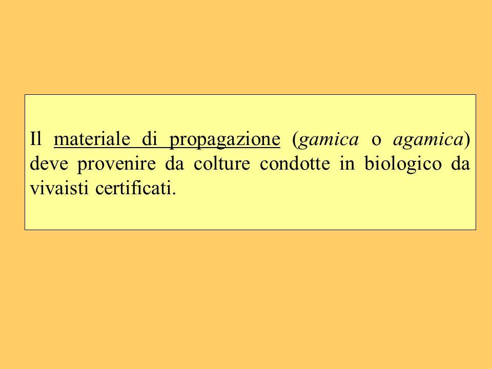 Il materiale di propagazione (gamica o agamica) deve provenire da colture condotte in biologico da vivaisti certificati.