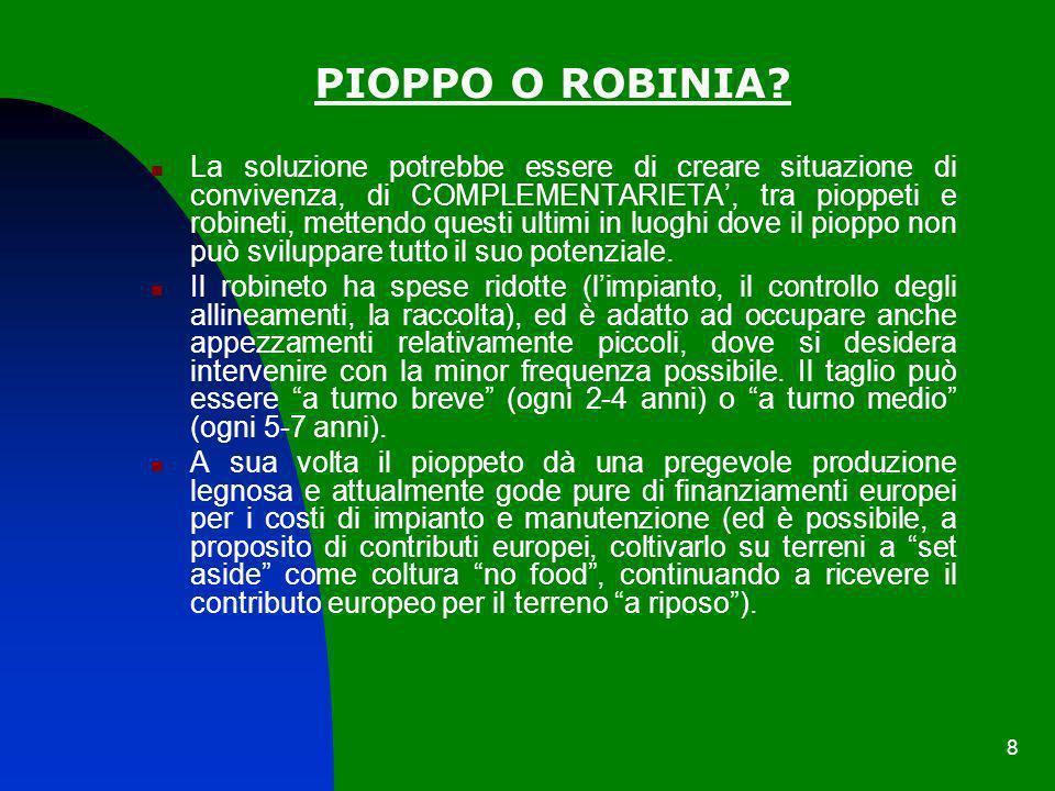PIOPPO O ROBINIA