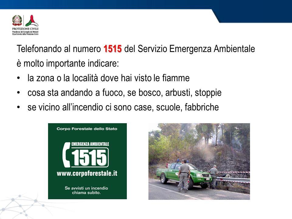 Telefonando al numero 1515 del Servizio Emergenza Ambientale