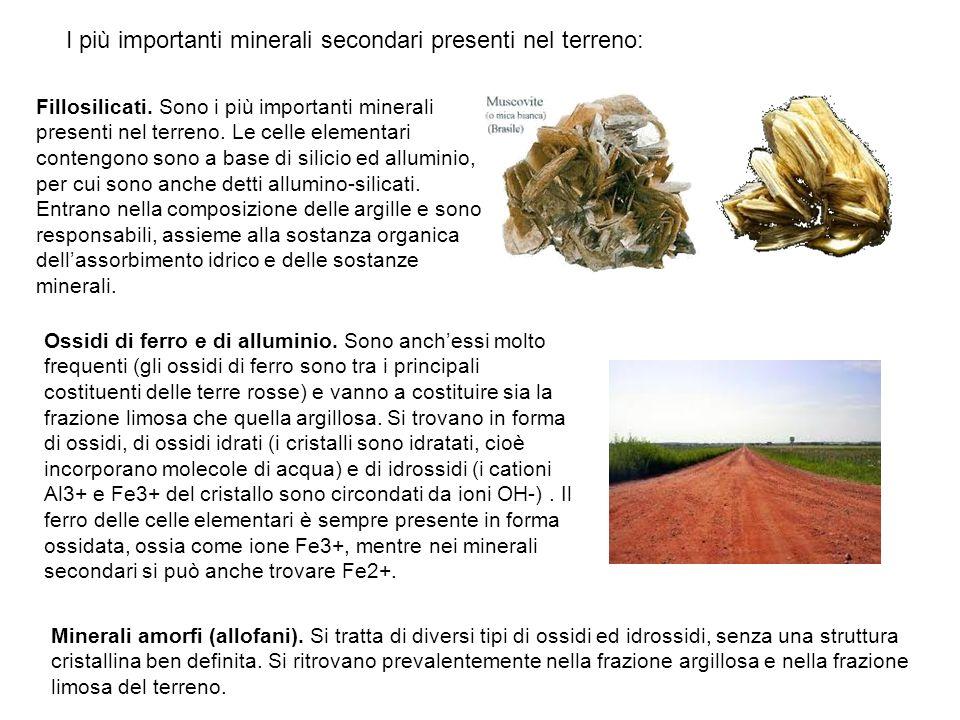 I più importanti minerali secondari presenti nel terreno:
