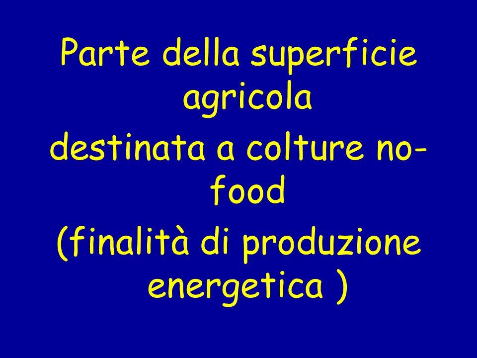 Parte della superficie agricola destinata a colture no-food (finalità di produzione energetica )