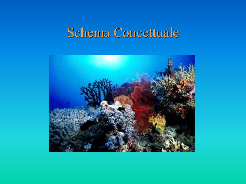 Schema Concettuale
