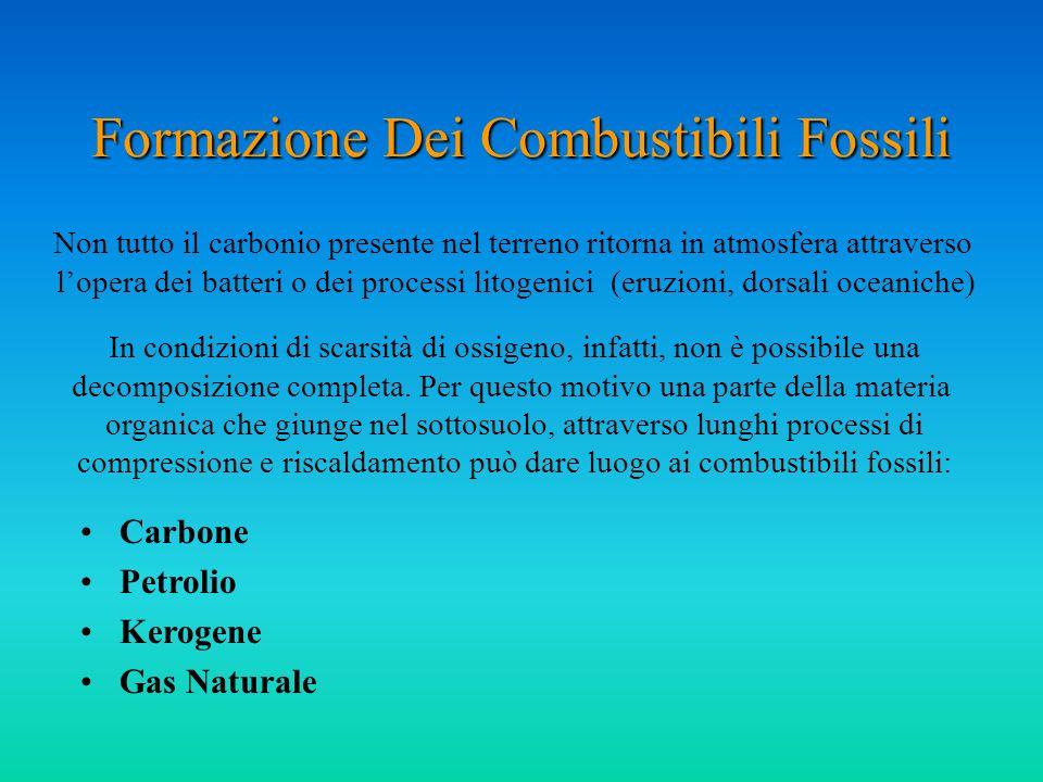 Formazione Dei Combustibili Fossili