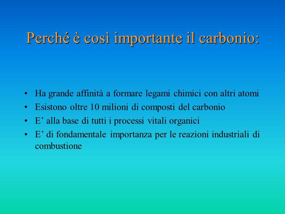 Perché è così importante il carbonio: