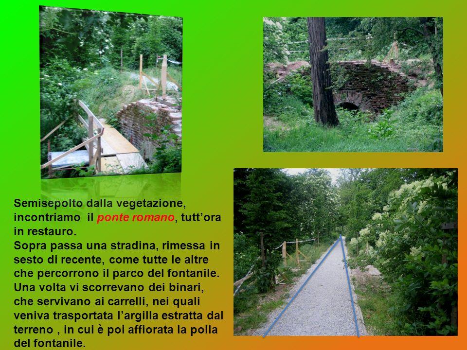 Semisepolto dalla vegetazione, incontriamo il ponte romano, tutt'ora in restauro.
