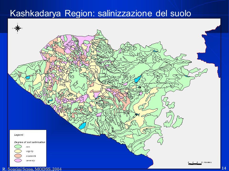 Kashkadarya Region: salinizzazione del suolo