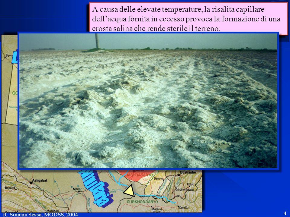 A causa delle elevate temperature, la risalita capillare dell'acqua fornita in eccesso provoca la formazione di una crosta salina che rende sterile il terreno.