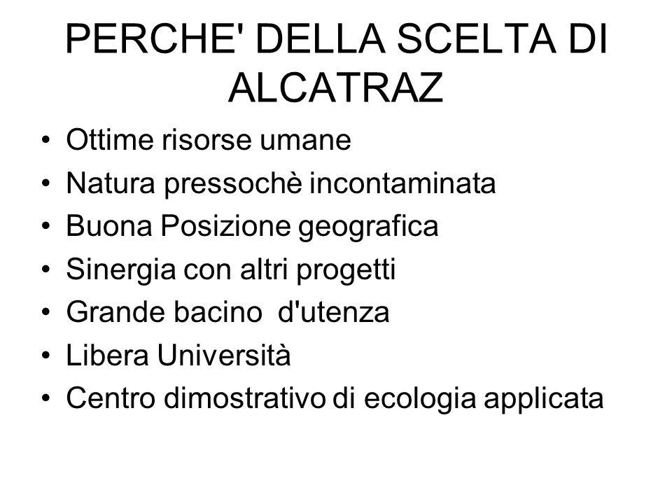 PERCHE DELLA SCELTA DI ALCATRAZ
