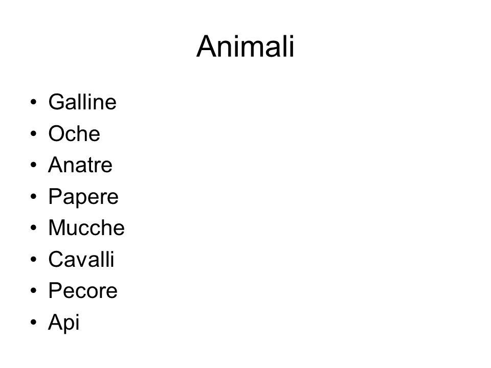 Animali Galline Oche Anatre Papere Mucche Cavalli Pecore Api