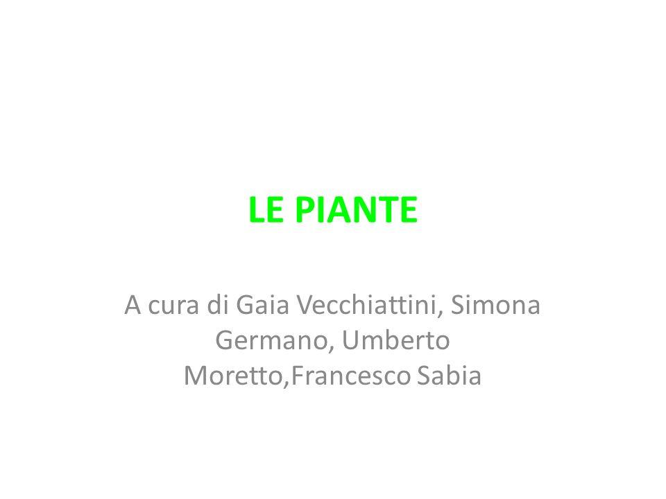 LE PIANTE A cura di Gaia Vecchiattini, Simona Germano, Umberto Moretto,Francesco Sabia