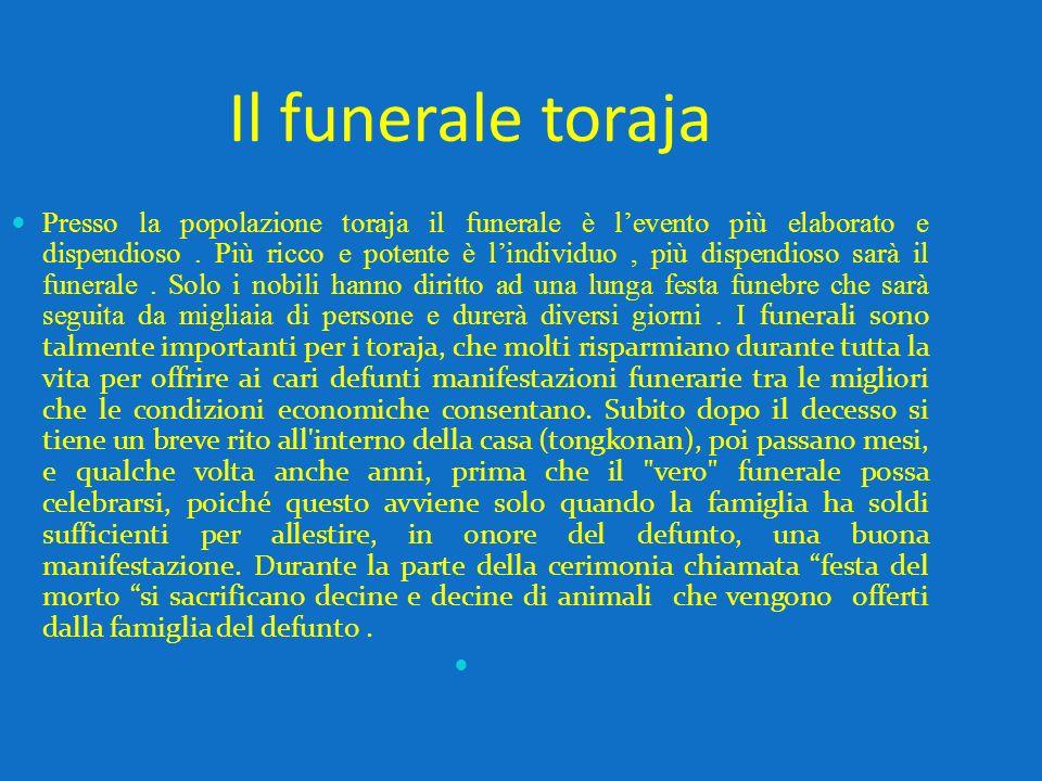 Il funerale toraja