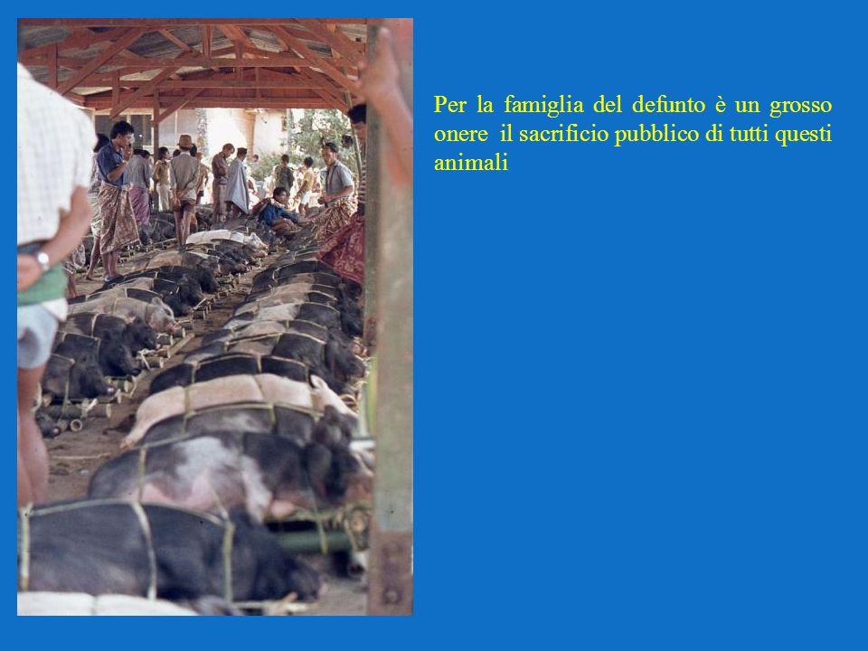 Per la famiglia del defunto è un grosso onere il sacrificio pubblico di tutti questi animali