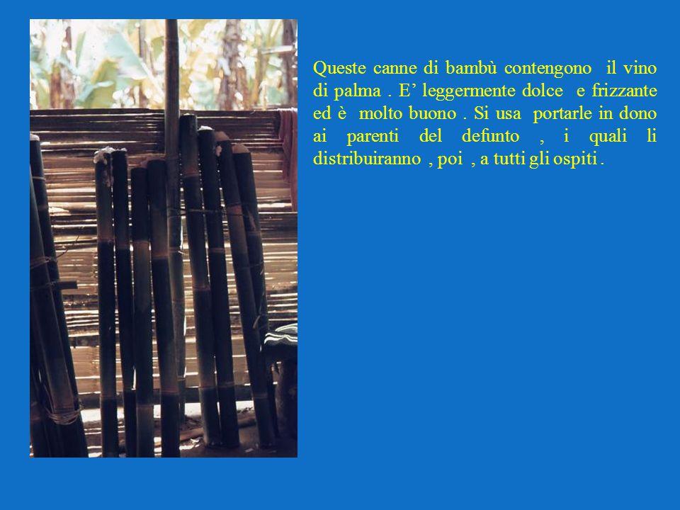 Queste canne di bambù contengono il vino di palma