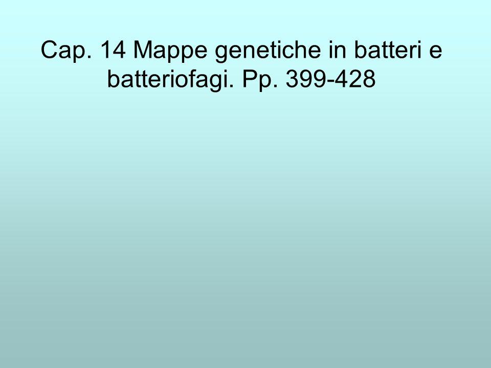 Cap. 14 Mappe genetiche in batteri e batteriofagi. Pp. 399-428