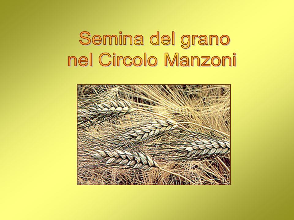 Semina del grano nel Circolo Manzoni