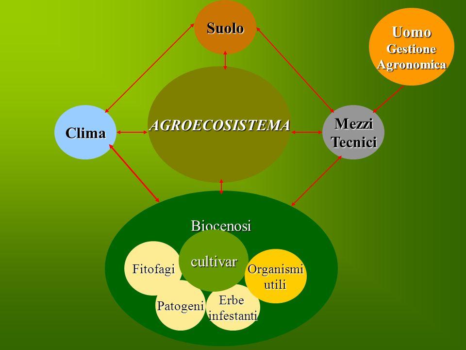 Suolo Uomo AGROECOSISTEMA Clima Mezzi Tecnici