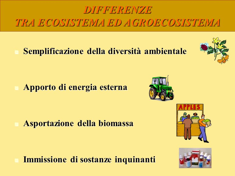 DIFFERENZE TRA ECOSISTEMA ED AGROECOSISTEMA