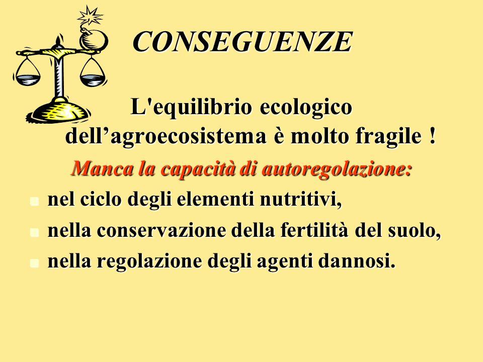 CONSEGUENZE L equilibrio ecologico dell'agroecosistema è molto fragile ! Manca la capacità di autoregolazione: