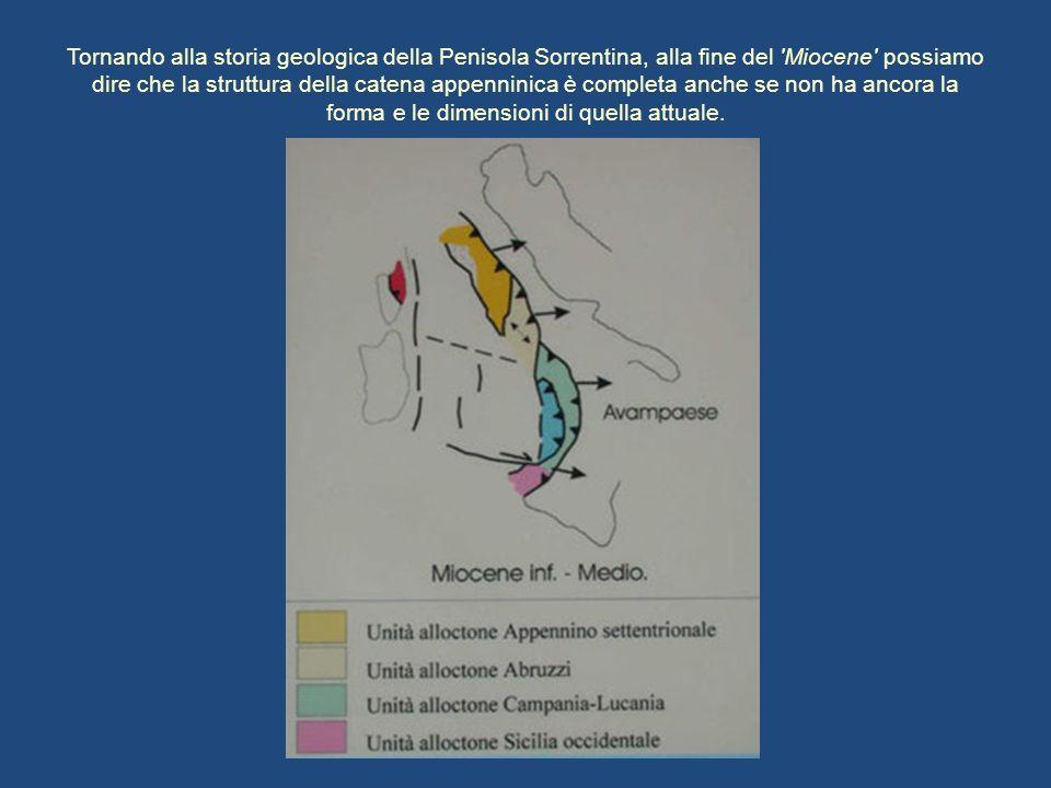 Tornando alla storia geologica della Penisola Sorrentina, alla fine del Miocene possiamo dire che la struttura della catena appenninica è completa anche se non ha ancora la forma e le dimensioni di quella attuale.