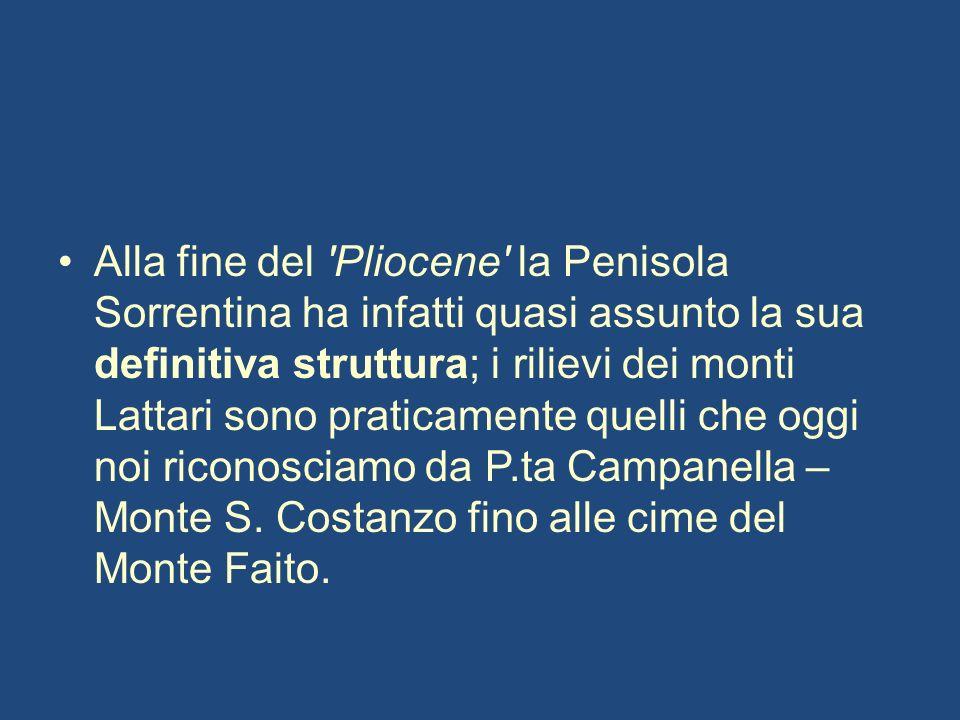 Alla fine del Pliocene la Penisola Sorrentina ha infatti quasi assunto la sua definitiva struttura; i rilievi dei monti Lattari sono praticamente quelli che oggi noi riconosciamo da P.ta Campanella – Monte S.