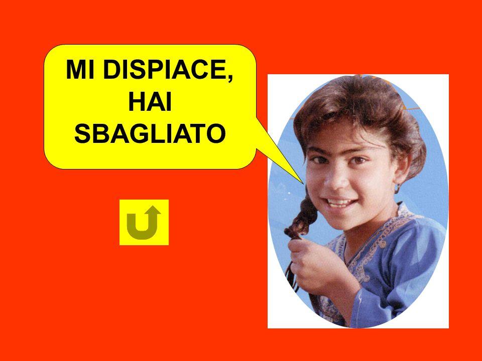 MI DISPIACE, HAI SBAGLIATO