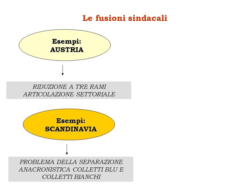 RIDUZIONE A TRE RAMI ARTICOLAZIONE SETTORIALE