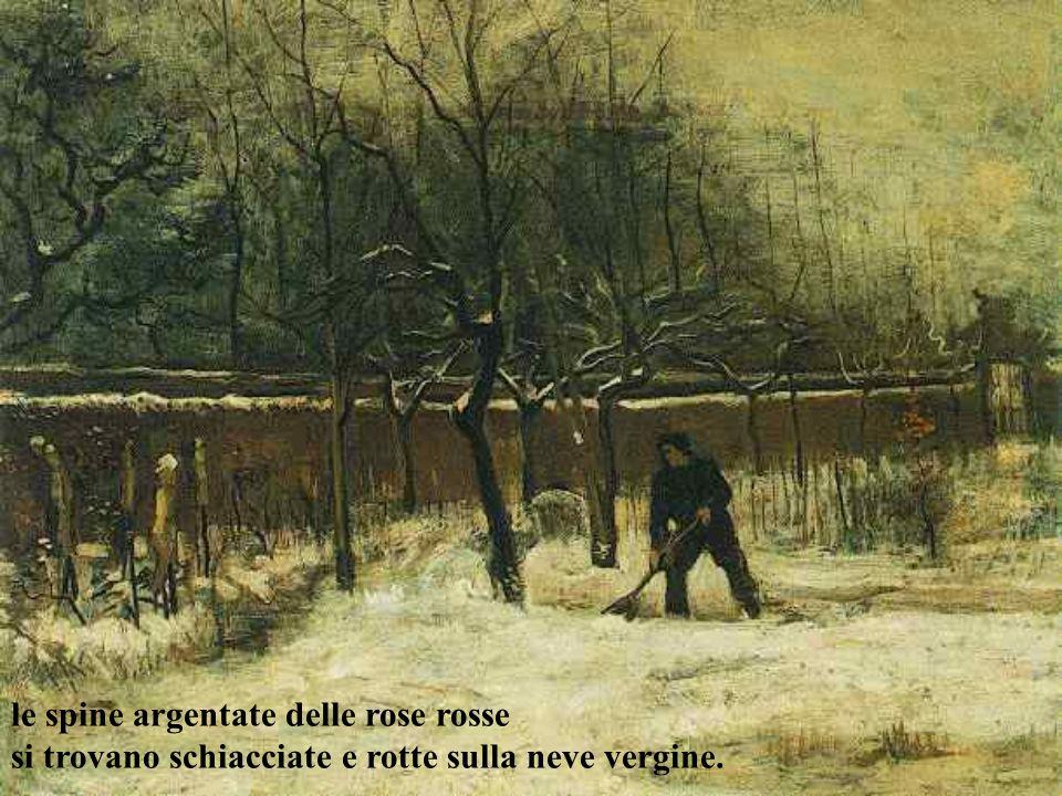 le spine argentate delle rose rosse si trovano schiacciate e rotte sulla neve vergine.